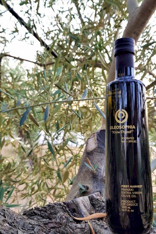 Oleosophia_500mL_on_tree_00